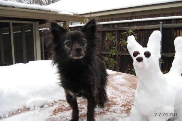 В Британии такой снег, что люди лепят снеговиков похожих на их домашних животных