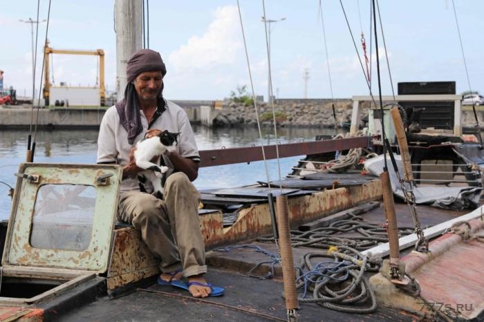 Морской бродяга с котом спаслись через полгода дрейфа в океане