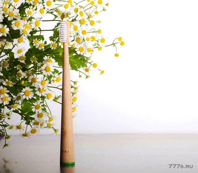 Выбор бамбуковых зубных щеток