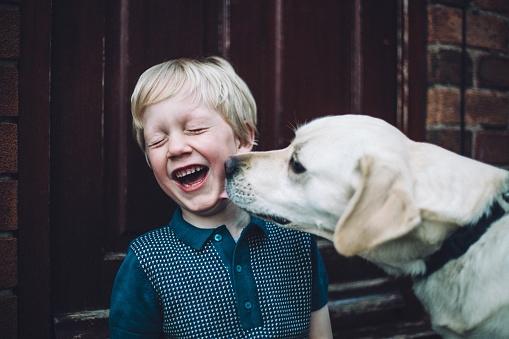 Почему собаки лижут вас или себя?