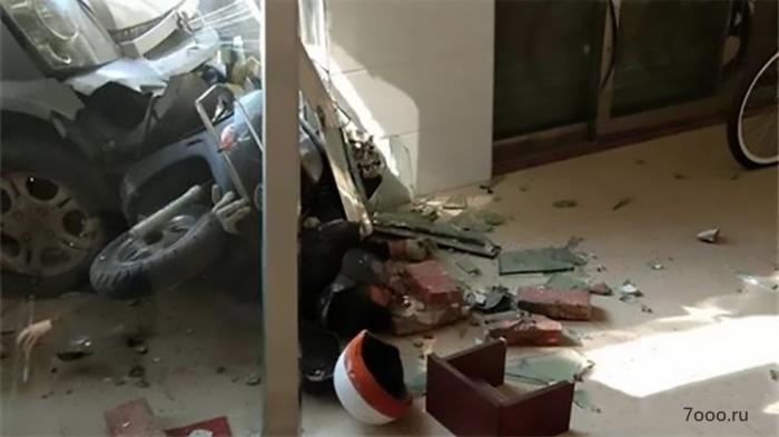 Собака-убийца скончался после того, как владелец домашнего животного протаранил его в кирпичную стену своей машиной