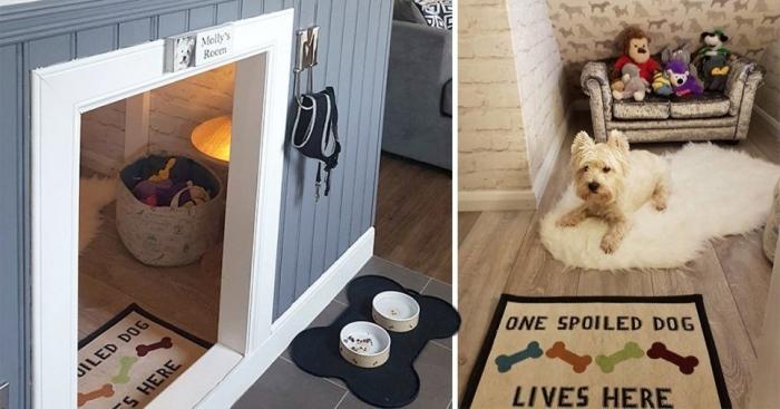 Парень построил для собаки комнату под лестницей, чтобы она чувствовала себя так же важной, как и его ребенок
