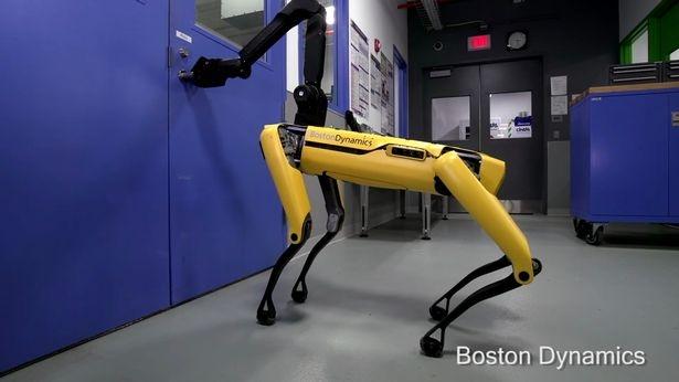Роботы похожие на собак открывают двери – интересно посмотреть, что нас всех ждет