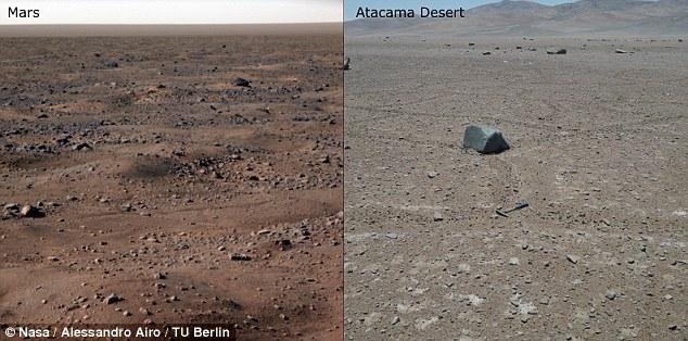 Ученые говорят, что существует большая вероятность, что на Марсе есть инопланетная жизнь