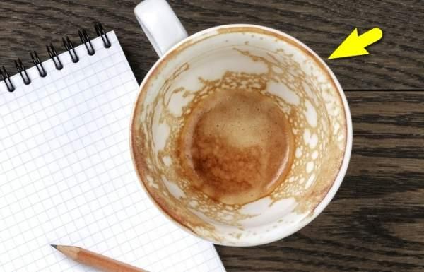 Стоит ли часто мыть от кофе кружку