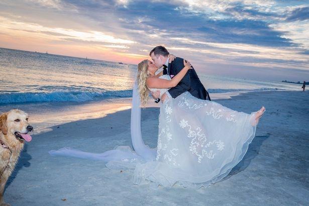 Романтический первый танец пары на приморской свадьбе, был испорчен собакой, сходившей по большому в романтическом кадре
