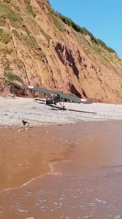 Драматический момент летчик совершает аварийную посадку у самых ног пешеходов выгуливающих своих собак на пляже в Девоне