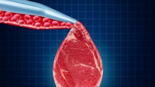 Синтетическое мясо
