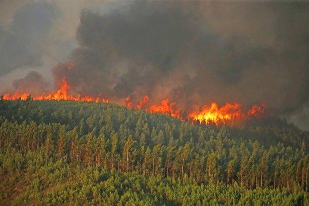 Британский пенсионер, 78 лет, арестован «за поджог лесных пожаров в отпуске в Испании»