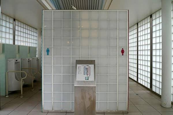 Домовой в туалете