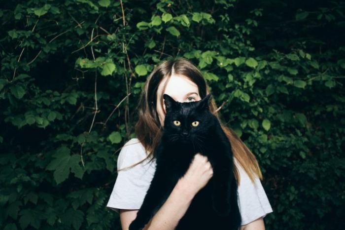 Любят ли кошки действительно обниматься?