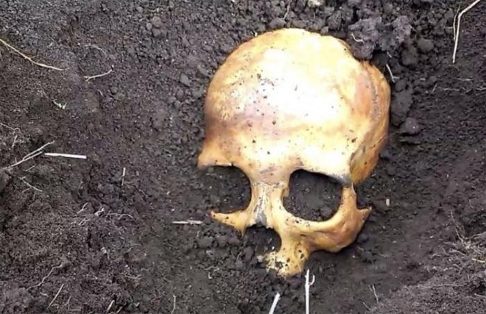 Мужчина обнаружил, что жена зарубила топором бывшего мужа, найдя его череп