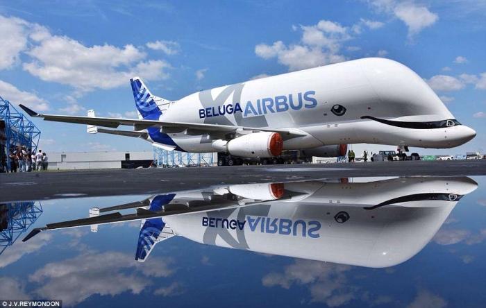 Airbus «навел странный макияж на свой самолет Beluga, что делает его более похожим на животное