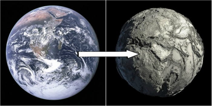 Ученые опасаются, что апокалиптическое «массовое вымирание» уничтожит большую часть жизни на Земле