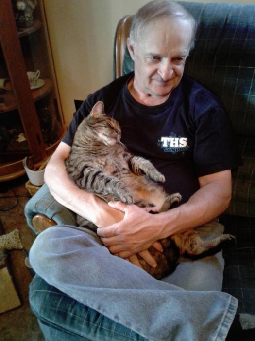 Кошка настаивает на том, чтобы сидеть на коленях у своего папочки по полчаса каждое утро
