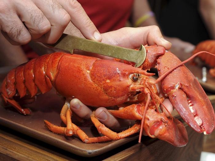 Ресторан утверждает, что успокаивает ракообразных седативной коноплёй