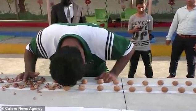 Мастер по восточным единоборствам расколол головой 247 грецких орехов, пытаясь побить мировой рекорд