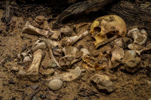 Семья решила, что кости под домом — это кости отца, который пропал без вести в 1961 году