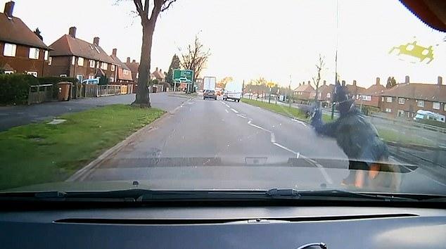 Чудо, малыш! Фильм показывает момент, когда мальчика сбиваем одна машина после чего его чуть не переехала другая машина. А что же мальчик?