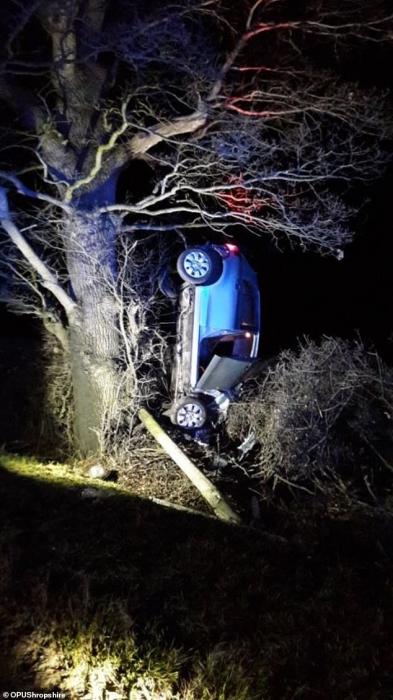 Полиция арестовала водителя по подозрению в вождении в нетрезвом виде после того, как автомобиль врезался в телеграфный столб