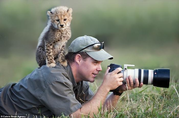 Фотобомбы диких животных, любопытство которых создало идеальные фото
