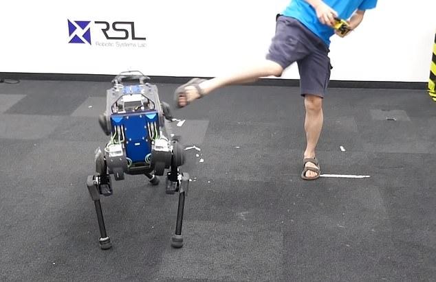 В фильме показан четвероногий бот «ANImal», использующий ИИ, чтобы подняться после того, как человек пнул его