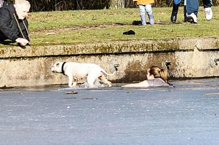 Храбрая женщина прыгает в замерзающее озеро и проплывает 20 метров, чтобы спасти утопающего пса