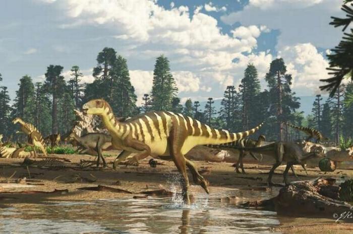 Крошечный динозавр размером с маленькое кенгуру обнаружен в древней давно потерянной рифтовой долине