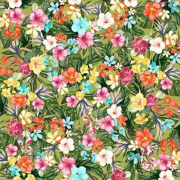 Цветочная сложная головоломка бросает вызов остроглазым следователям. Найдите спрятанный салат-латук среди цветов. Получится ли у вас?