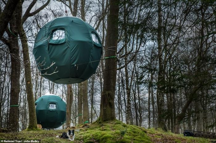 Палатки в Озерном крае подвешены на деревьях на высоте около 3 метров, поэтому кажется, что это НЛО