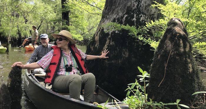 Ученые нашли в болоте Северной Каролины дерево старше, чем пирамиды
