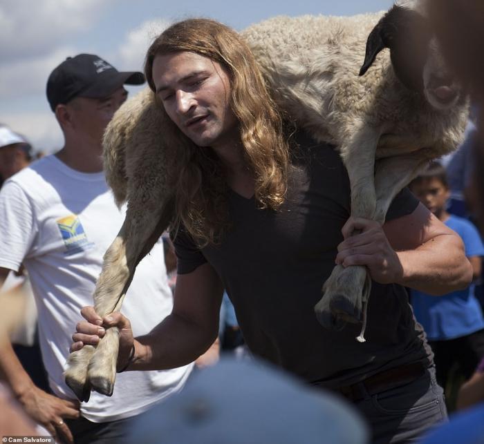 Соревнование в Сибири по приседанию с овцой впервые за тысячу лет выиграл иностранец