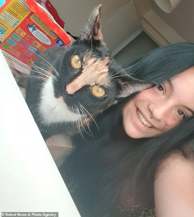 Не зря 9 жизней им дают. Полосатый кот по кличке Яффо Кекс чудом остался жив упав с 50 метров из квартиры на 18 этаже