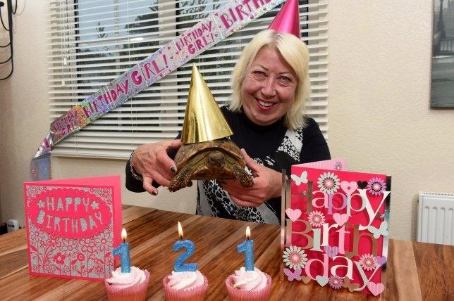 Самый старый в мире питомец черепаха Томми празднует свой 121-й день рождения