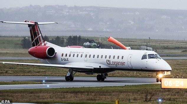 Летчик остановил пассажирский самолет, чтобы ежик пересек ВПП