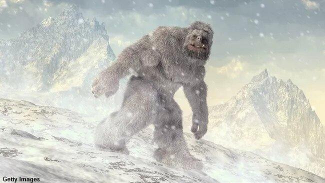 Русский врач считает, что Снежный человек мог убить путешественников на перевале Дятлова