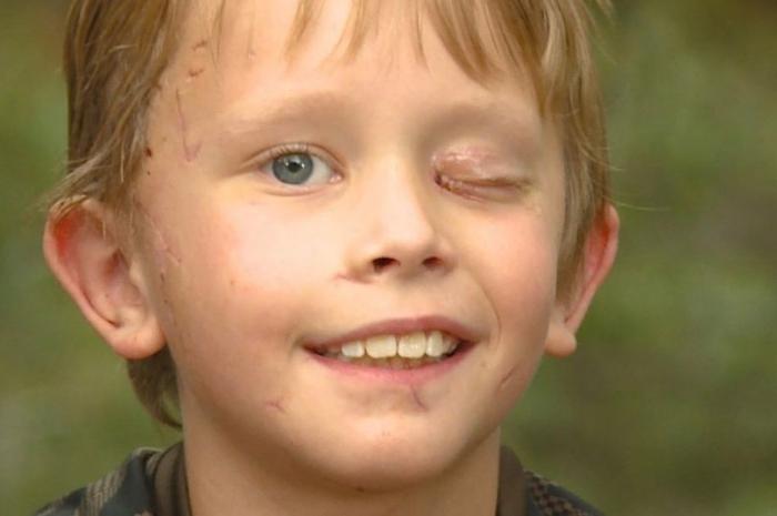 Мальчик, 8 лет, отбился от горного льва голыми руками в невероятном поединке