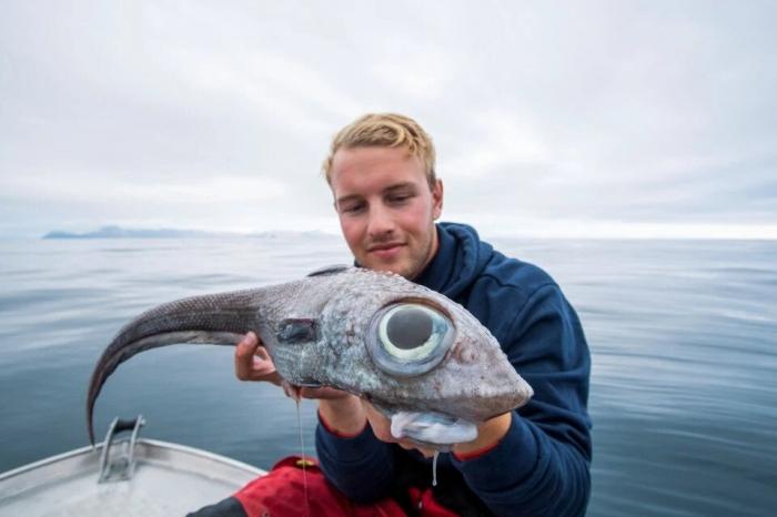 Рыбак ничего не может понять, выловив страшное инопланетное существо с гигантскими глазами