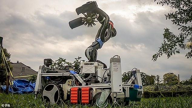 Английские ученые создали робота, который может прибираться по саду, обрезать розы и подстригать кусты