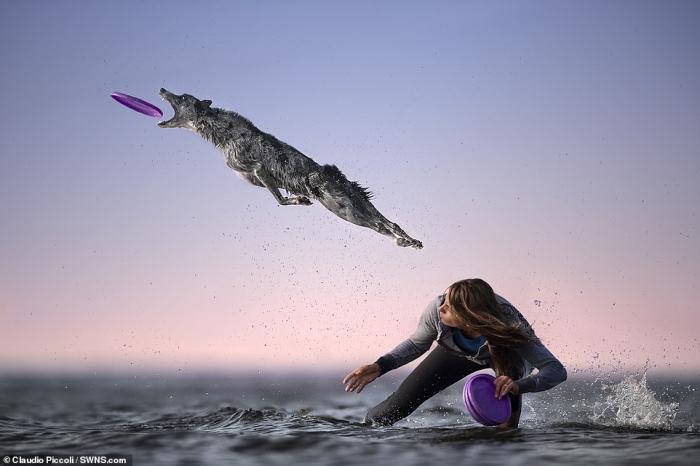 Невероятные фото показывают, как смелые собаки прыгают, чтобы схватить фрисби своих владельцев