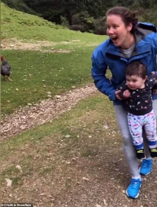 Мать выхватывает своего малыша с дорожки, по которой бежит баран, буквально в нескольких сантиметрах от удара