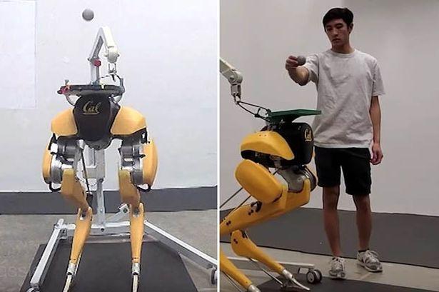 Роботу удается 42 раза отбить мяч головой с помощью продвинутого ИИ