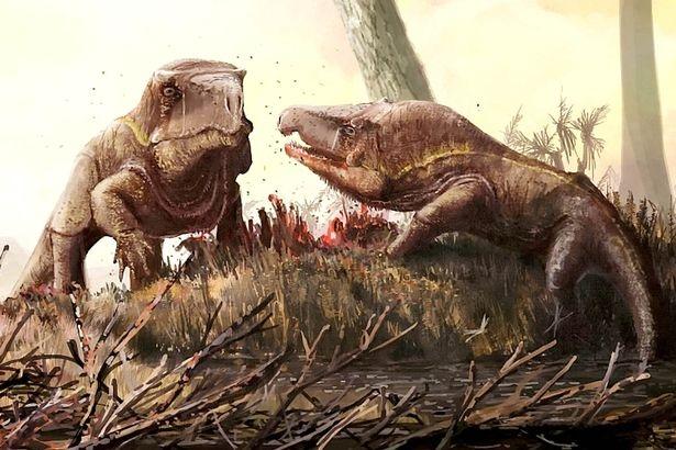 Скелет странного «дракона с гигантской головой», которому 250 млн. лет выкопали в России
