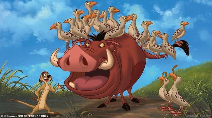 Видели Бородавочника, засиженного птицами, как персонаж Пумба из мультика Король Лев?