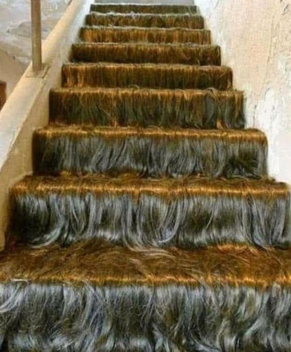 Худший дизайн дома – от волосатой лестницы до прозрачного унитаза