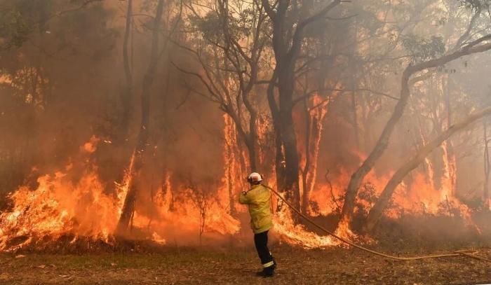 Австралия превратилась в доменную печь. Температура достигала в самый жаркий день 45C, ожидается дойти до 50C
