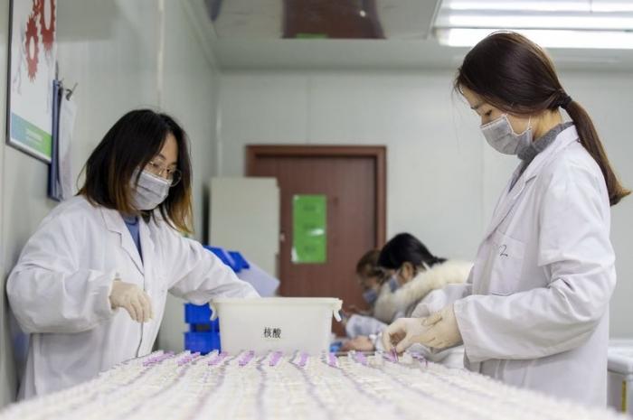 Ученые работают над вакциной коронавируса, но предупреждают: «До этого еще год»