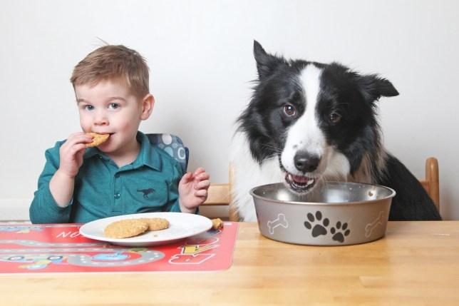 Двухлетний мальчик так любит свою собаку, что считает, что они братья.