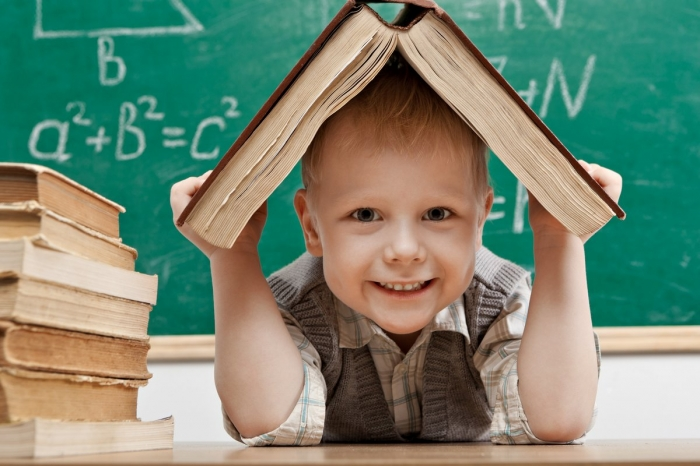 В России школьные занятия могут быть перенесены на лето