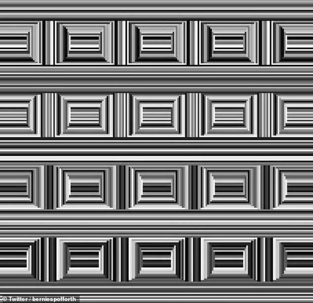 Оптическая иллюзия мозговой тизер, который выглядит как группа квадратов оставляет игроков в тупике. Найдите 16 кругов.  Принимайте вызов.